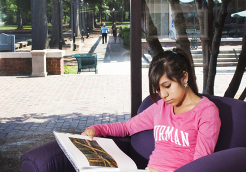 A student studies in the Furman University Bookstore, overlooking the Fuman campus.