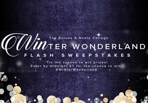 Holiday Marketing 2014_WINter Wonderland_1