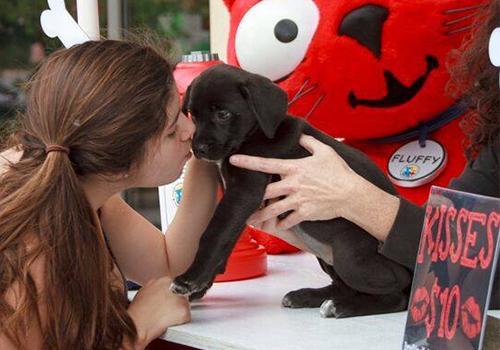 Vanderbilt_Humane Assoc_kissing booth2